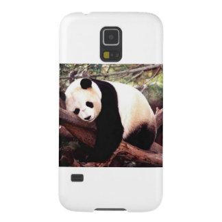 Panda soñolienta carcasas de galaxy s5