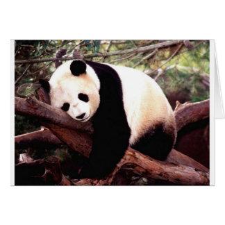 Panda soñolienta tarjeta de felicitación