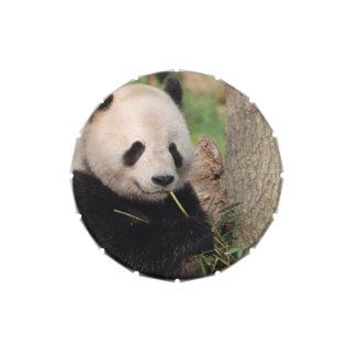 Panda sonriente linda jarrones de dulces