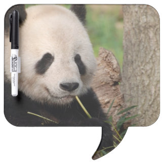 Panda sonriente linda tableros blancos