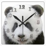 Panda Square Wall Clock