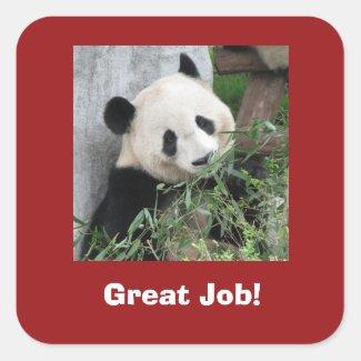 Panda Stickers, Teacher, Great Job!