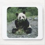 Panda Tapetes De Ratones