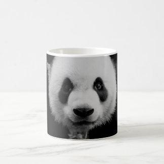 Panda Tazas