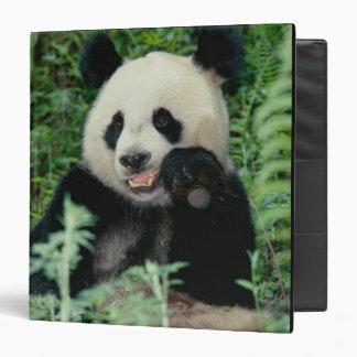 Panda the forest, Wolong, Sichuan, China Binder
