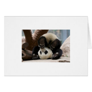 Panda Upside Down Card