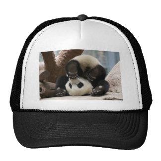 Panda upside-down gorro
