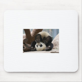 Panda Upside Down Mouse Pad