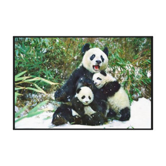 Panda with cubs Wrapped Canvas Print