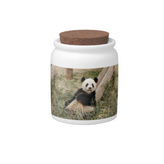 PandaM001 Candy Jars