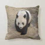PandaM003 Pillow