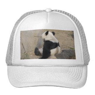 PandaM004 Trucker Hat