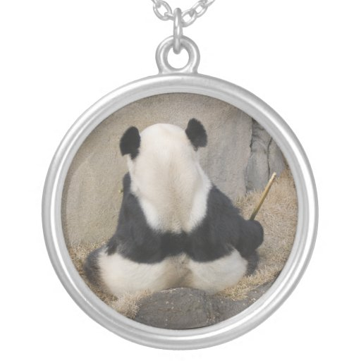 PandaM005 Pendientes