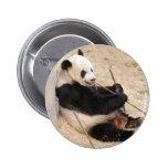 PandaM009 Pin
