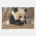 PandaM012 Kitchen Towel