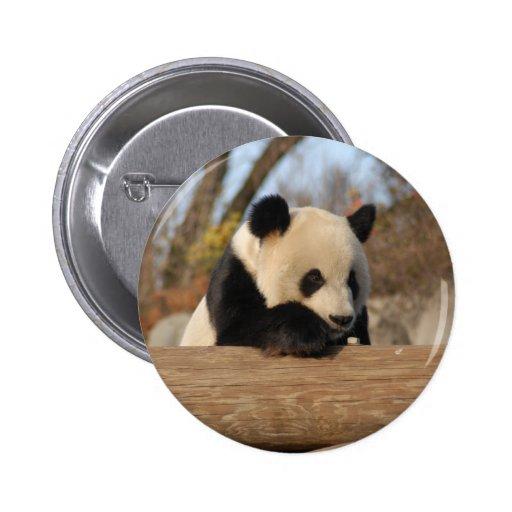 PandaM012 Pin Redondo 5 Cm