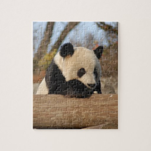 PandaM012 Puzzles Con Fotos