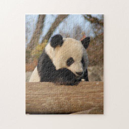PandaM012 Rompecabeza