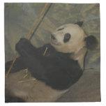 PandaM013 Printed Napkins