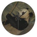 PandaM013 Relojes