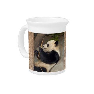 PandaM015 Jarras De Beber