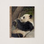 PandaM015 Jigsaw Puzzle