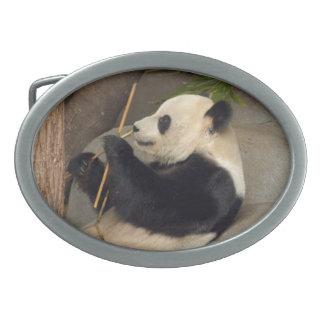 PandaM015 Oval Belt Buckle