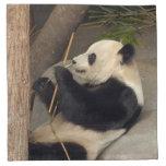 PandaM015 Printed Napkins
