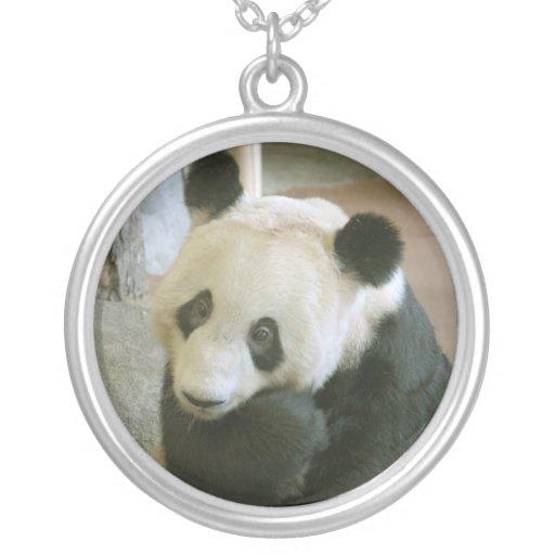 PandaM017 Grimpolas Personalizadas
