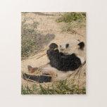 PandaM018 Rompecabezas Con Fotos