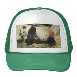 PandaM019 Trucker Hat