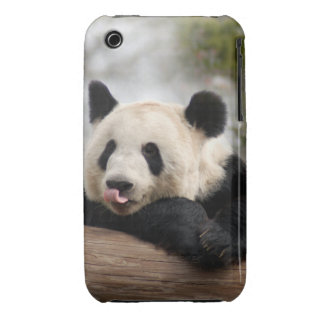 PandaM021 iPhone 3 Covers