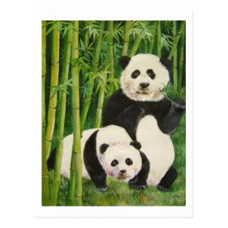 pandas2 post card