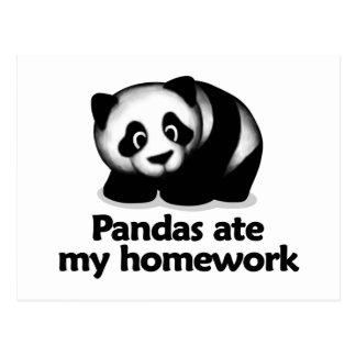 Pandas ate my homework postcard