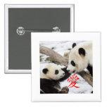 Pandas chinas del amor pin