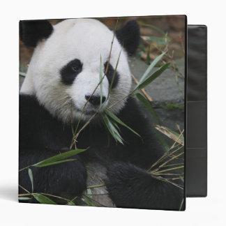 """Pandas gigantes en la protección de la panda gigan carpeta 1 1/2"""""""