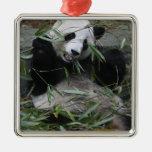 Pandas gigantes en la protección y los 2 de la pan adorno de reyes