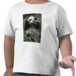 Pandas gigantes en la protección y los 2 de la camiseta