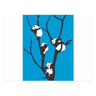 Pandas Hangin hacia fuera Postal