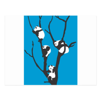 Pandas Hangin' Out Postcard