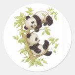 Pandas lindas etiquetas