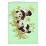 Pandas lindas tarjeta