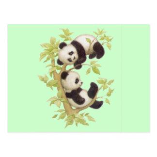 Pandas lindas tarjetas postales