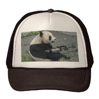 panda's need guns hats