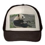 panda's need guns trucker hat