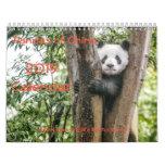 Pandas of China, 2019 Wall Calendar