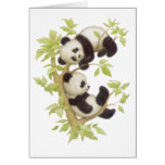 Pandas Playing in a Tree Cards