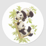 Pandas Playing in a Tree Round Stickers