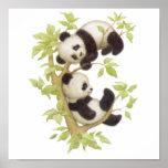 Pandas que juegan en un árbol impresiones