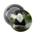 PandaSD002 Pin